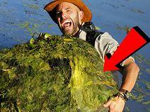 เมื่อหนุ่มนักผจญภัยใจกล้า เห็นบางสิ่งอยู่ในน้ำ เลยรีบลงไปจับขึ้นมา แถมตัวใหญ่มาก !!